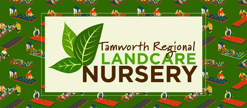 Tamworth Regional Landcare Community Nursery
